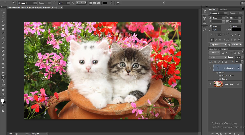 Hướng dẫn giữ bản quyền hình ảnh bằng chữ 3D trong suốt
