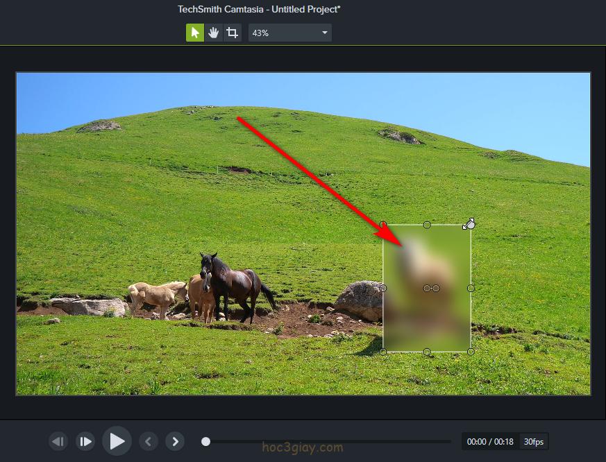 Hướng dẫn làm mờ đối tượng trên video bằng camtasia