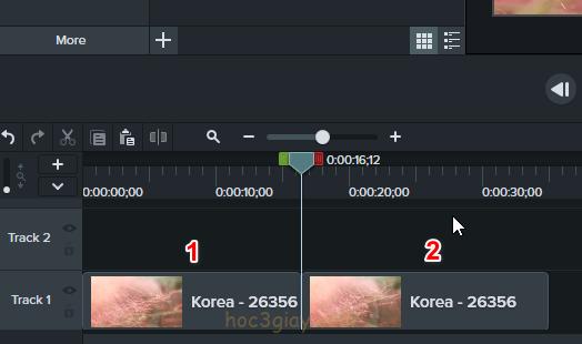 Hướng dẫn nhân đôi, cắt, xóa video trong camtasia